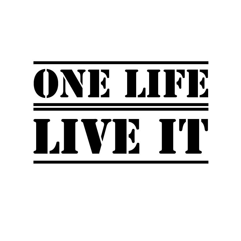 one-life-live-it-car-sticker.jpg