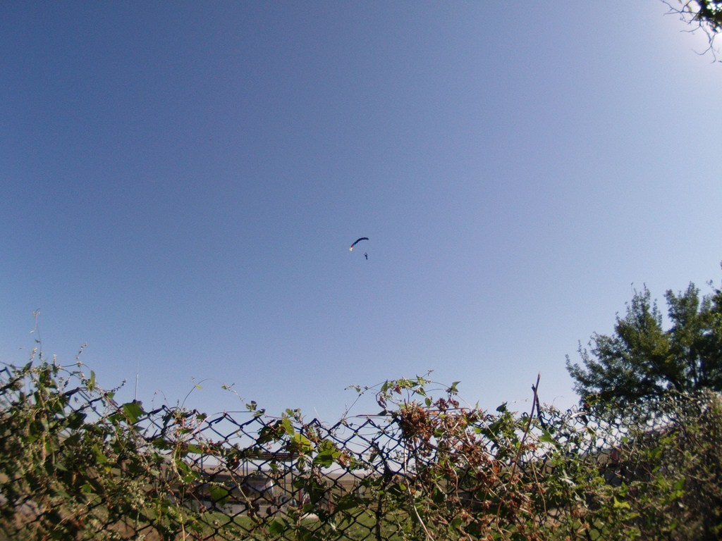 ATC_0010Copy.JPG